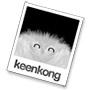 Keenkong logo